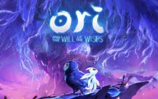 Ori and the Will of the Wisps — Пираты выложили игру на торренты за день до выхода