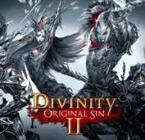 Не запускается Divinity: Original Sin 2 (вылетает при запуске) — что делать?