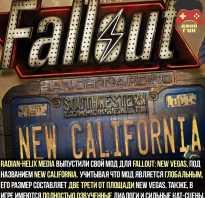 Fallout 76: Фанат подколол создателей необычной посылкой