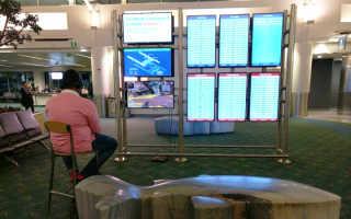 Apex Legends — Невменяемый пассажир сыграл в PS4 на мониторе аэропорта